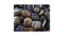 Striped Polished Pebbles