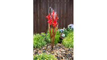 Red Iris Flower - Fountain Only