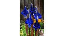Blue Iris Flower - Complete Kit