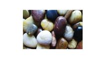 Mixed Polished Pebbles