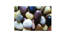 Mixed Polished Pebbles