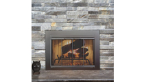 Fremont Fireplace Door