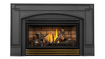 Roxbury 30 Direct Vent Gas Fireplace Insert with Polished Brass Louvers
