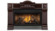 Roxbury Brown 30 Direct Vent Gas Fireplace Insert with Stainless Steel Louver