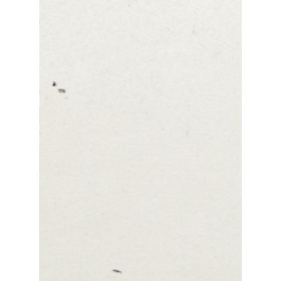 White Aspen Concrete Color