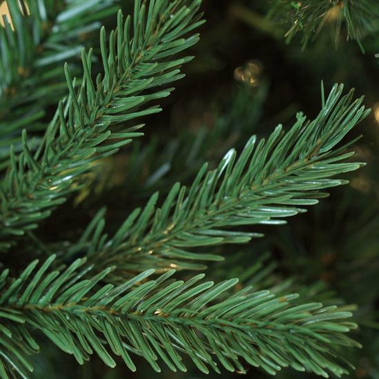 """2-7.5""""H Full 55""""W Balsam Fir Prelit Tree Warm White LED 750"""