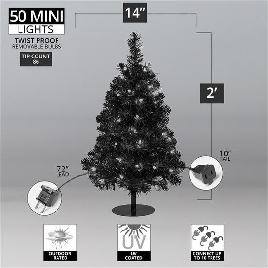2ft-Incan-Walkway-Tree-Infographic