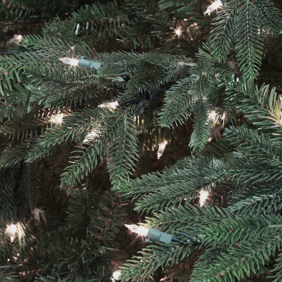 "3-6.5""H Full 54""W Carolina Fir Prelit Tree Warm White LED 700"