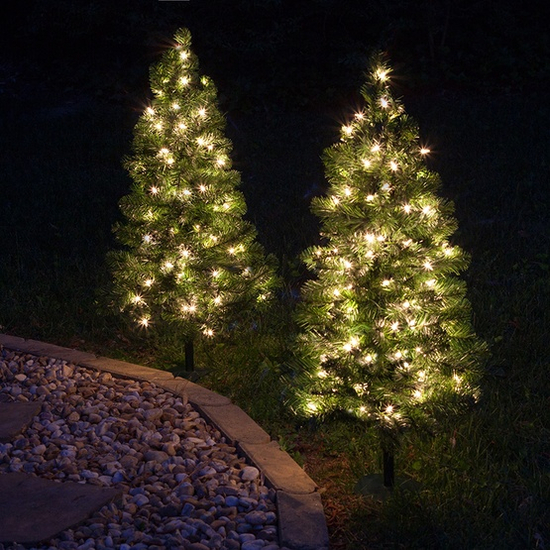 Clear-Walkway-Trees-2ft-9935