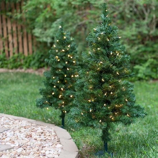 Outdoor-Walkway-Trees-9903