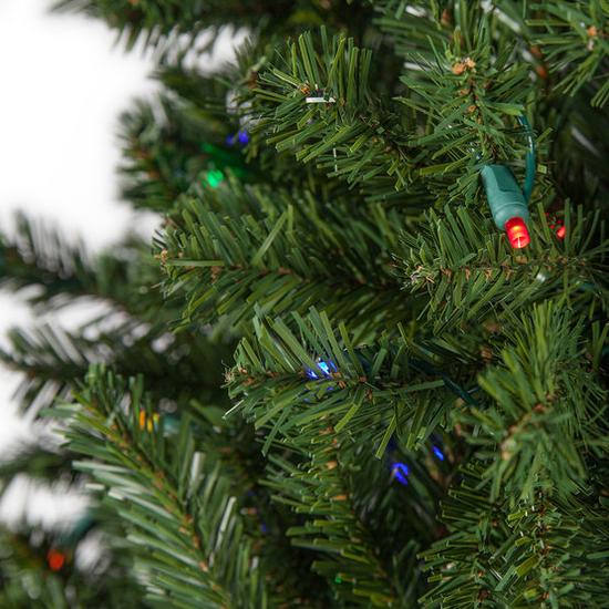 Slender Douglas Christmas Tree