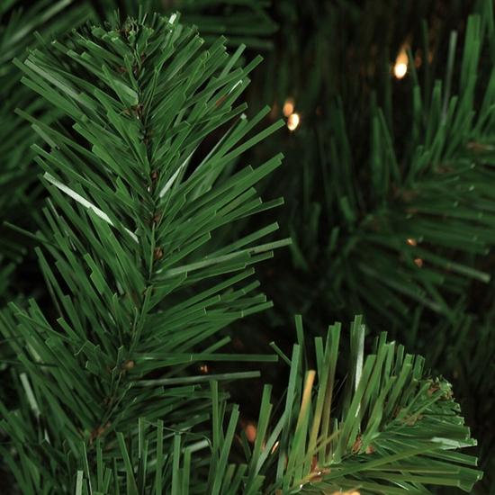 Sequoia Tip