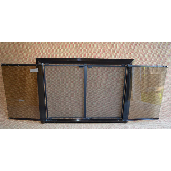 Apex Fireplace Door