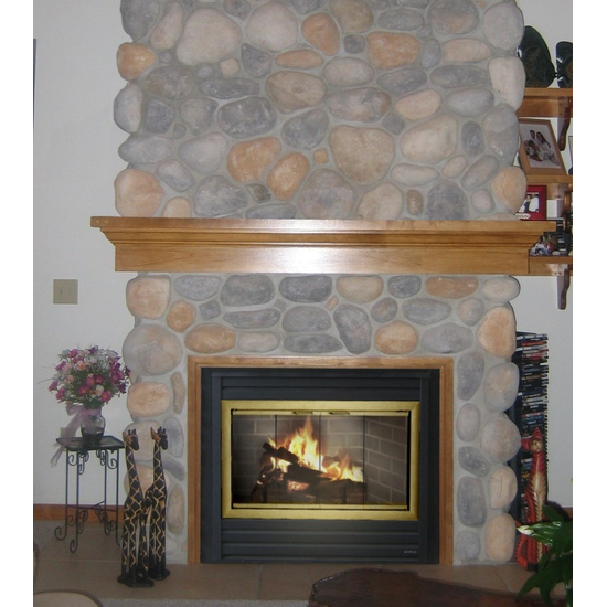 Brookfield Zero Clearance Fireplace Door in Satin Brass