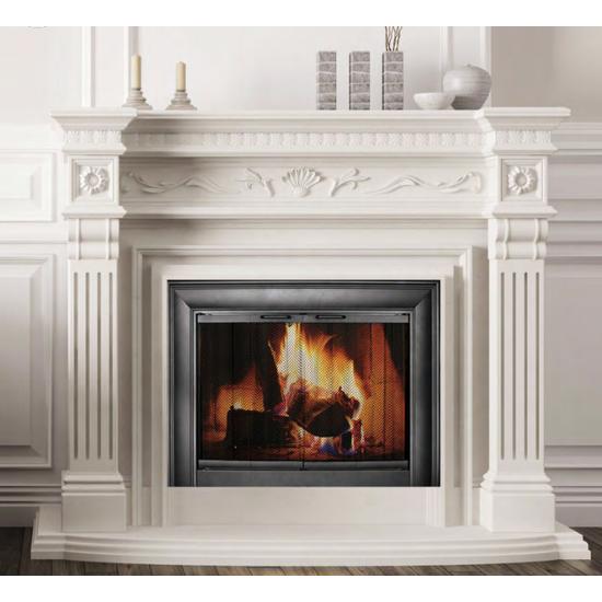 Celebrity Fireplace Door