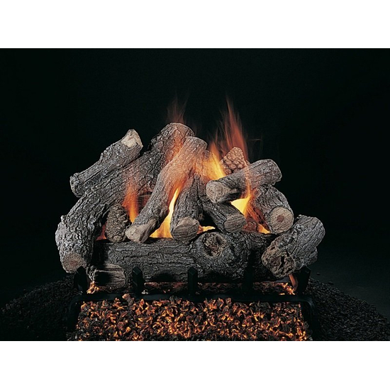Bonfire Vented Gas Log Set