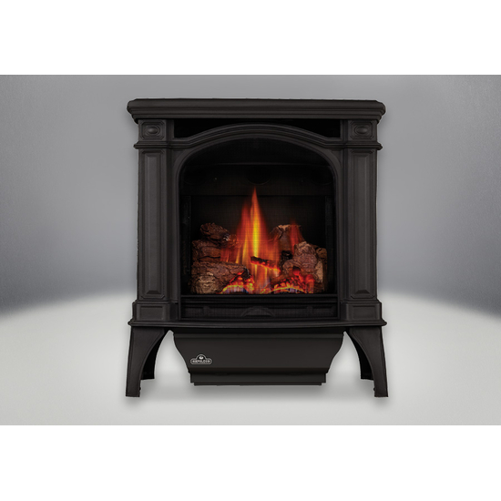 Bayfield Direct Vent Gas Stove shown in standard Metallic Black finish