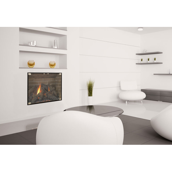 The Vanguard Fireplace Door gives a contemporary look to your masonry fireplace.