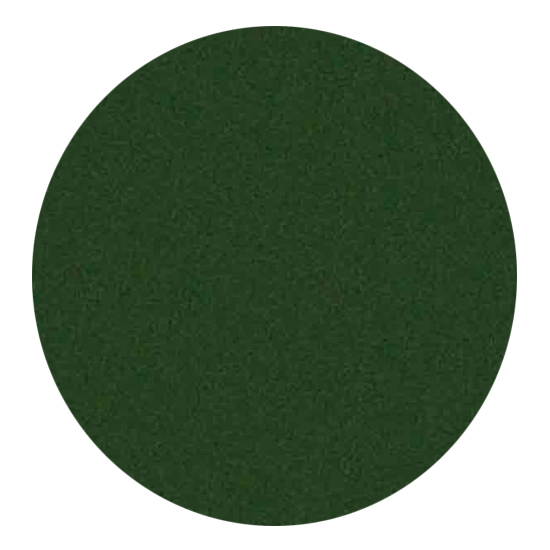 Forest Green High Temperature Stove Spray Paint