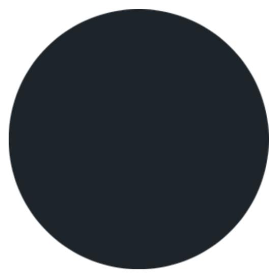 Black Satin Paint