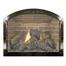 Black Nickel Plated Arch Masonry Fireplace Door