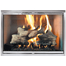 Classic Fireplace Door shown in a Stainless Finish