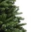 Residential Christmas Tree Douglas Fir Unlit Tree
