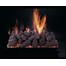 Pine Cones Vented Gas Log Set on CS Burner
