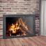 Shenandoah Fireplace Door in Matte Black