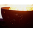 Funky Dog Wood Burning Fire Pit 36 Inches
