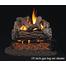 RealFyre Golden Oak reduced Depth Gas Log Set for Vented fireplaces.