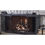 Hudson Remote Control Masonry Fireplace Door - with doors partially open