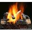 Inferno Series Gas Log