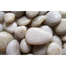 White Polished Pebbles